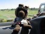Monty in the Serengeti safari van