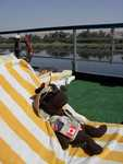 Monty relaxes on the Nile cruise