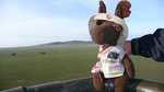 Monty surveys the Serengeti savanna