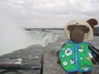 Highlight for album: Monty in Niagara Falls, Canada